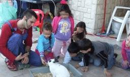 חויה עם בעלי חיים - דודי רז